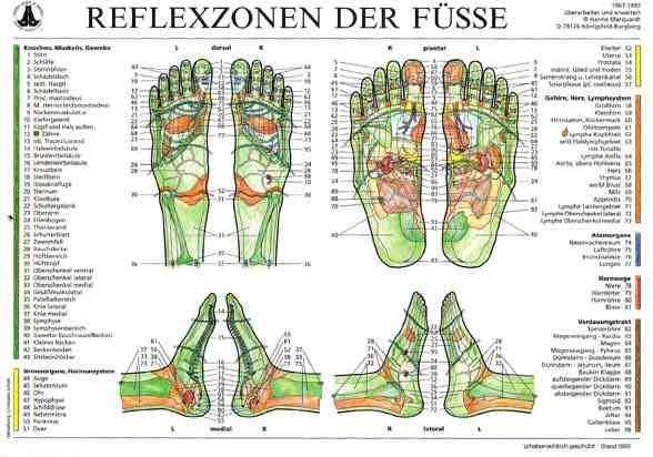 füße und organe